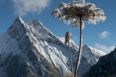 01 - Berit Winterhalder - Oktober i Alpene