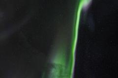 Venn med Aurora