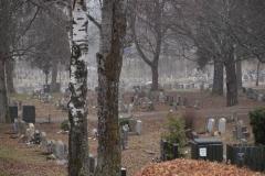 Bilde 04 - Stille som i graven