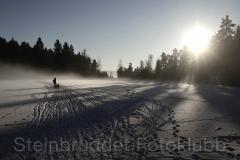 Nr.15 - Iskald vinterdag på Vesletjern 42,0x29,7 cm